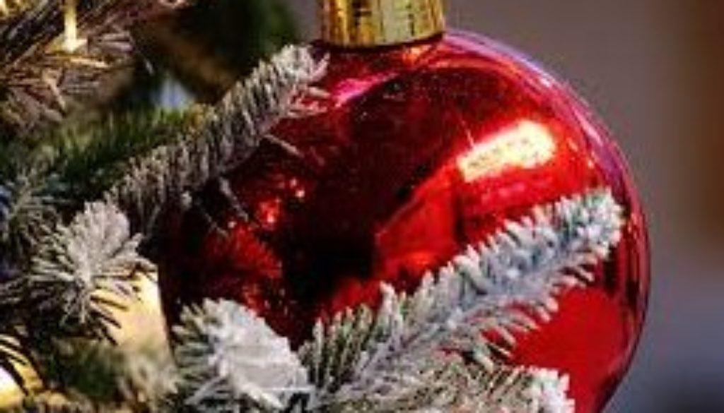 Unser Weihnachtsprogramm ist online!